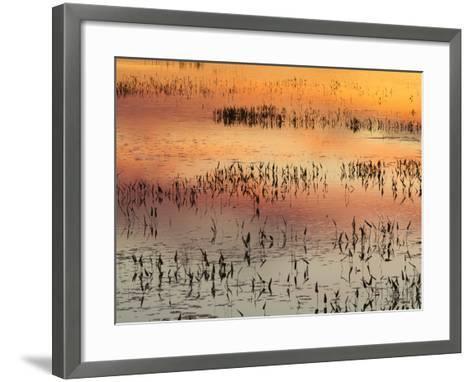 Sunset Reflections on Tupper Lake-Michael Melford-Framed Art Print