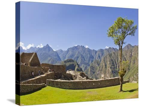 A Lone Tree and the Pre-Colmubian Inca Ruins at Machu Picchu-Mike Theiss-Stretched Canvas Print