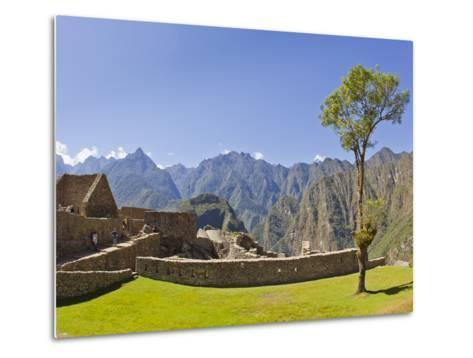 A Lone Tree and the Pre-Colmubian Inca Ruins at Machu Picchu-Mike Theiss-Metal Print
