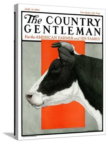 """""""Black and White Cow in Profile,"""" Country Gentleman Cover, July 21, 1923-Charles Bull-Stretched Canvas Print"""