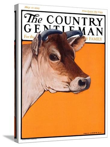 """Dairy Cow,"" Country Gentleman Cover, May 12, 1923-Charles Bull-Stretched Canvas Print"