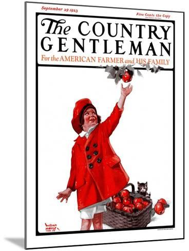"""""""Picking Apples,"""" Country Gentleman Cover, September 29, 1923-WM. Hoople-Mounted Giclee Print"""
