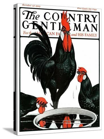 """""""Fowl Reflections,"""" Country Gentleman Cover, October 27, 1923-Paul Bransom-Stretched Canvas Print"""