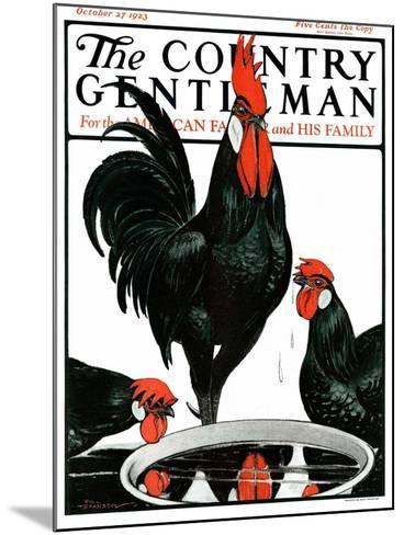 """""""Fowl Reflections,"""" Country Gentleman Cover, October 27, 1923-Paul Bransom-Mounted Giclee Print"""