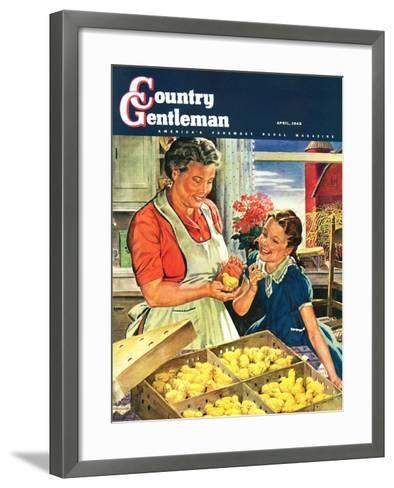 """""""Crate of New Baby Chicks,"""" Country Gentleman Cover, April 1, 1945-W^C^ Griffith-Framed Art Print"""