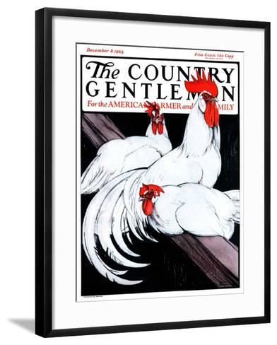 """""""Roosting Rooster and Hens,"""" Country Gentleman Cover, December 8, 1923-Paul Bransom-Framed Art Print"""