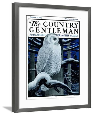 """""""Snowy Owl in Forest at Night,"""" Country Gentleman Cover, January 12, 1924-Paul Bransom-Framed Art Print"""