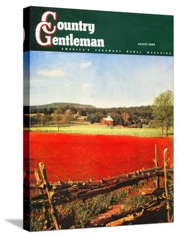 """Photographic Landscape,"" Country Gentleman Cover, August 1, 1945-R.A. Mawhinney-Stretched Canvas Print"
