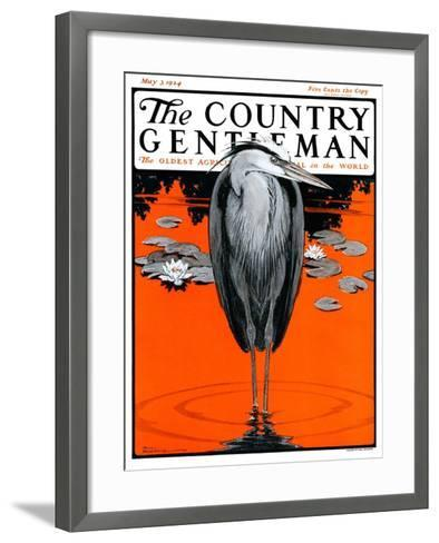 """Crane and Lilly Pads,"" Country Gentleman Cover, May 3, 1924-Paul Bransom-Framed Art Print"