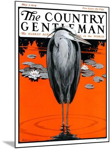 """Crane and Lilly Pads,"" Country Gentleman Cover, May 3, 1924-Paul Bransom-Mounted Giclee Print"