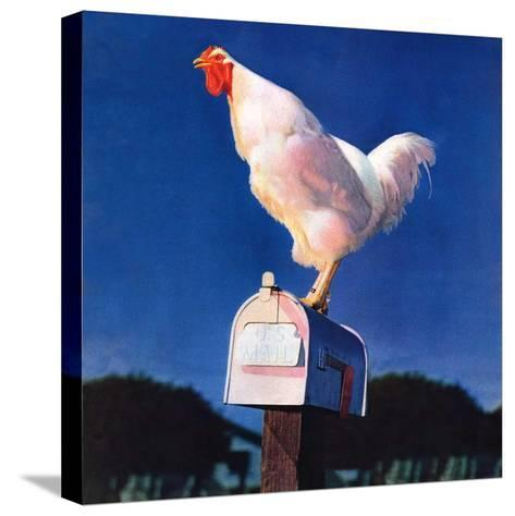 """Rooster on Mailbox,""May 1, 1941--Stretched Canvas Print"