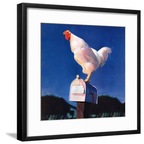 """""""Rooster on Mailbox,""""May 1, 1941--Framed Art Print"""