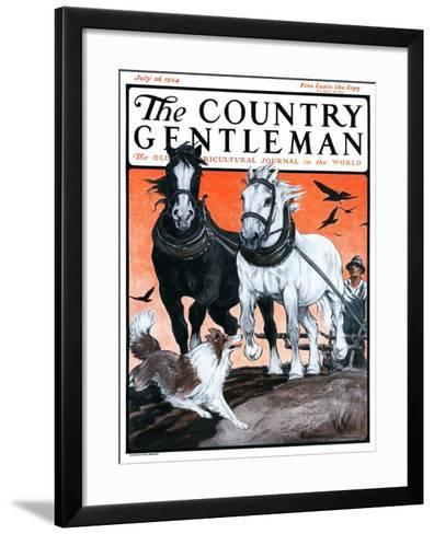"""""""Plowing the Field,"""" Country Gentleman Cover, July 26, 1924-Paul Bransom-Framed Art Print"""