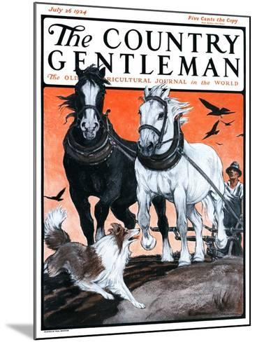 """""""Plowing the Field,"""" Country Gentleman Cover, July 26, 1924-Paul Bransom-Mounted Giclee Print"""