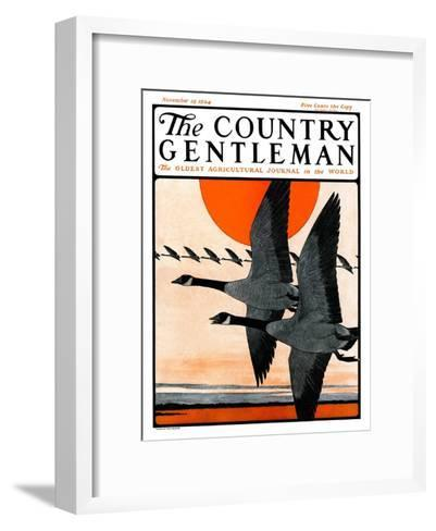 """""""Flock of Geese in Formation,"""" Country Gentleman Cover, November 15, 1924-Paul Bransom-Framed Art Print"""