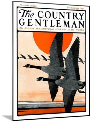 """""""Flock of Geese in Formation,"""" Country Gentleman Cover, November 15, 1924-Paul Bransom-Mounted Giclee Print"""
