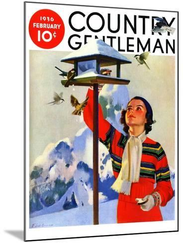 """""""Feeding the Birds,"""" Country Gentleman Cover, February 1, 1936-Jack Murray-Mounted Giclee Print"""