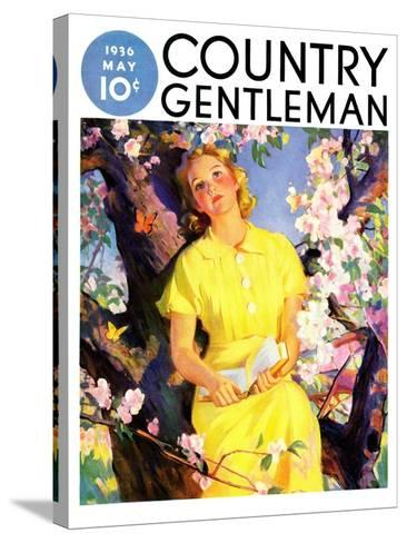 """""""Reading Among the Blossoms,"""" Country Gentleman Cover, May 1, 1936--Stretched Canvas Print"""