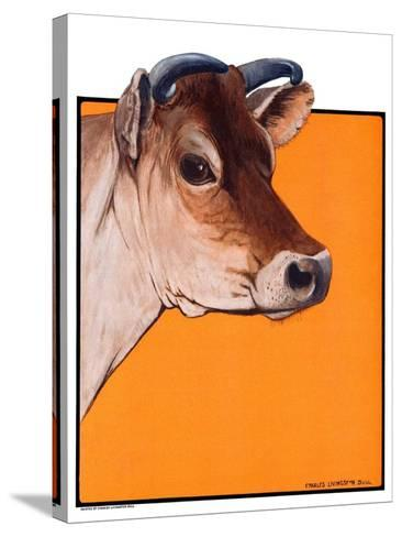 """""""Dairy Cow,""""May 12, 1923-Charles Bull-Stretched Canvas Print"""