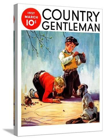 """Lost All His Marbles,"" Country Gentleman Cover, March 1, 1937-Henry Hintermeister-Stretched Canvas Print"