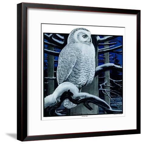 """Snowy Owl in Forest at Night,""January 12, 1924-Paul Bransom-Framed Art Print"