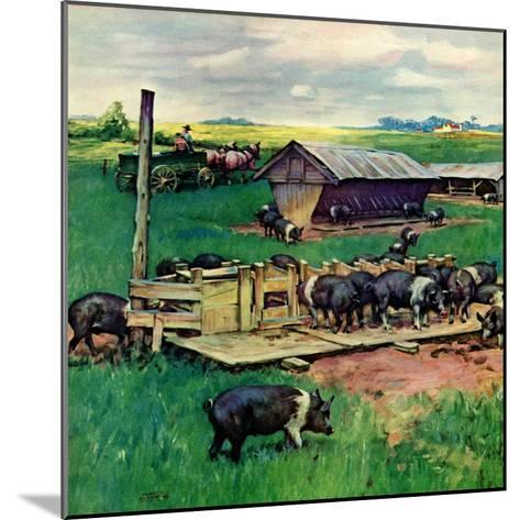 """""""Pigs Feeding,""""September 1, 1946-Matt Clark-Mounted Giclee Print"""