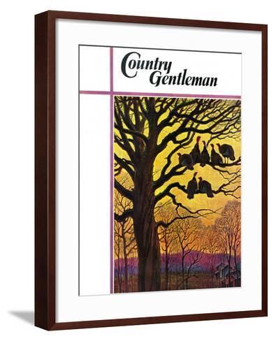 """Wild Turkeys Roosting,"" Country Gentleman Cover, November 1, 1938-Paul Bransom-Framed Art Print"