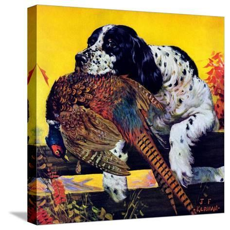 """Retriever with Pheasant,""November 1, 1934-J^F^ Kernan-Stretched Canvas Print"