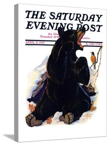 """""""End of Hibernation,"""" Saturday Evening Post Cover, April 17, 1937-Jack Murray-Stretched Canvas Print"""