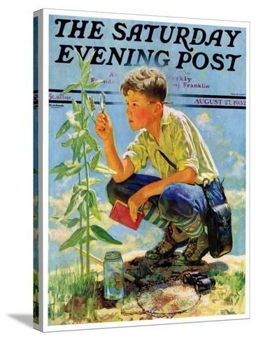 """""""Boy Botanist,"""" Saturday Evening Post Cover, August 27, 1932-Eugene Iverd-Stretched Canvas Print"""