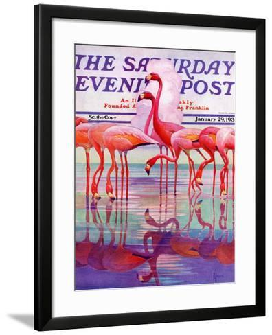 """Pink Flamingos,"" Saturday Evening Post Cover, January 29, 1938-Francis Lee Jaques-Framed Art Print"