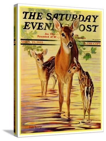 """Doe and Fawns,"" Saturday Evening Post Cover, April 29, 1933-Jack Murray-Stretched Canvas Print"