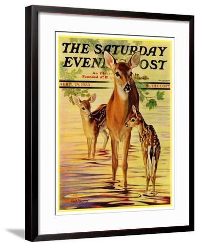 """""""Doe and Fawns,"""" Saturday Evening Post Cover, April 29, 1933-Jack Murray-Framed Art Print"""