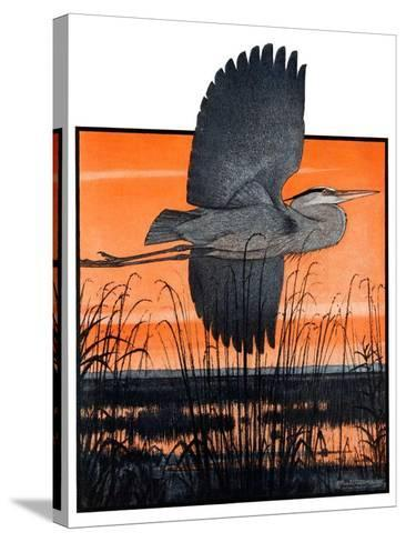 """Marsh Bird,""October 3, 1925-Paul Bransom-Stretched Canvas Print"