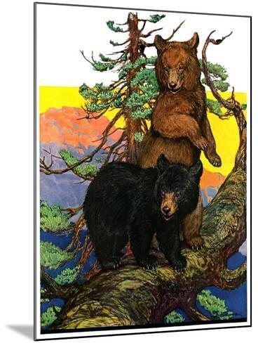 """Bears in Tree,""August 16, 1930-Charles Bull-Mounted Giclee Print"