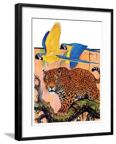 """Leopard and Parrots in Jungle,""September 2, 1933-Paul Bransom-Framed Art Print"