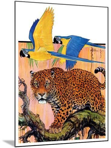 """Leopard and Parrots in Jungle,""September 2, 1933-Paul Bransom-Mounted Giclee Print"