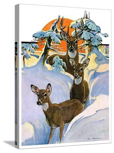 """""""Deer in Snow,""""February 7, 1931-Paul Bransom-Stretched Canvas Print"""