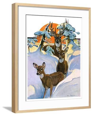 """""""Deer in Snow,""""February 7, 1931-Paul Bransom-Framed Art Print"""