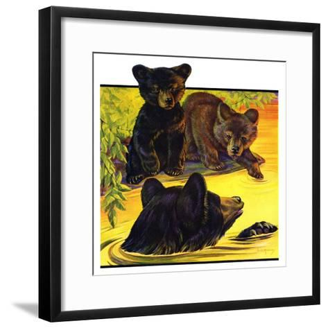 """Bear and Cubs in River,""August 25, 1934-Jack Murray-Framed Art Print"