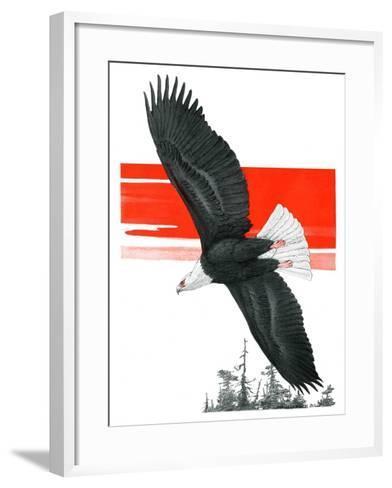"""Soaring Eagle,""March 22, 1924-Charles Bull-Framed Art Print"