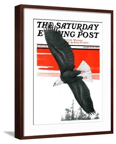 """Soaring Eagle,"" Saturday Evening Post Cover, March 22, 1924-Charles Bull-Framed Art Print"