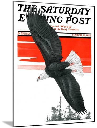 """Soaring Eagle,"" Saturday Evening Post Cover, March 22, 1924-Charles Bull-Mounted Giclee Print"