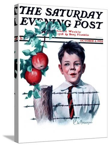 """""""Boy Tempted by Apples,"""" Saturday Evening Post Cover, October 4, 1924-Clarence William Anderson-Stretched Canvas Print"""