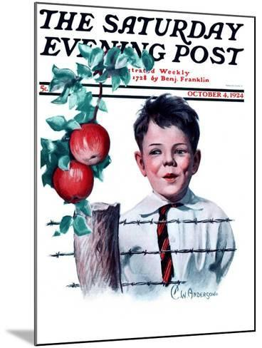 """""""Boy Tempted by Apples,"""" Saturday Evening Post Cover, October 4, 1924-Clarence William Anderson-Mounted Giclee Print"""