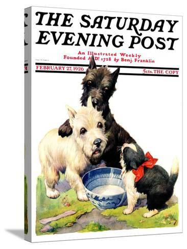 """""""Cat Guards Bowl of Milk,"""" Saturday Evening Post Cover, February 27, 1926-Robert L^ Dickey-Stretched Canvas Print"""