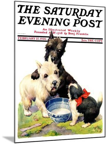 """""""Cat Guards Bowl of Milk,"""" Saturday Evening Post Cover, February 27, 1926-Robert L^ Dickey-Mounted Giclee Print"""