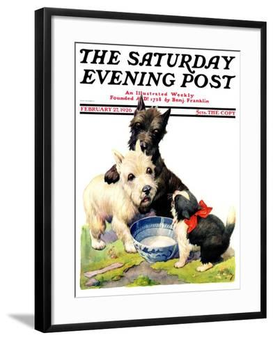 """Cat Guards Bowl of Milk,"" Saturday Evening Post Cover, February 27, 1926-Robert L^ Dickey-Framed Art Print"