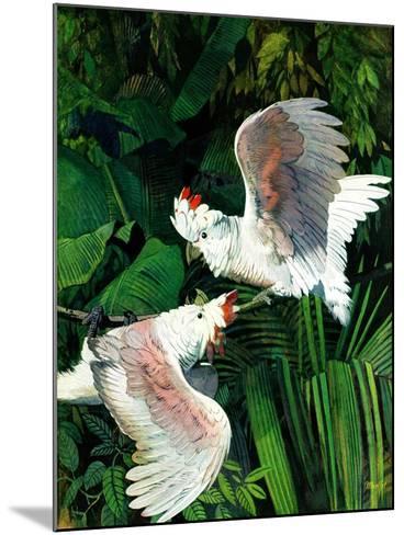 """Two Cockatoos,""September 3, 1938-Julius Moessel-Mounted Giclee Print"