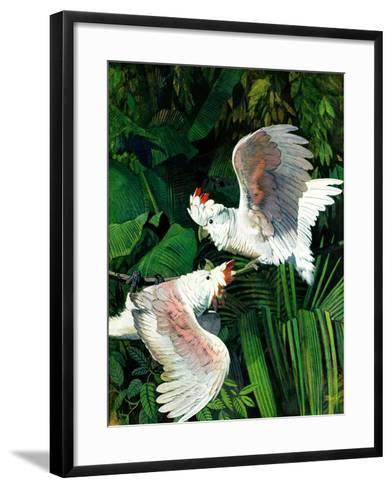 """""""Two Cockatoos,""""September 3, 1938-Julius Moessel-Framed Art Print"""